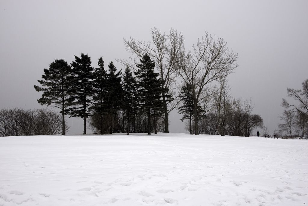 Humber Bay Park 3