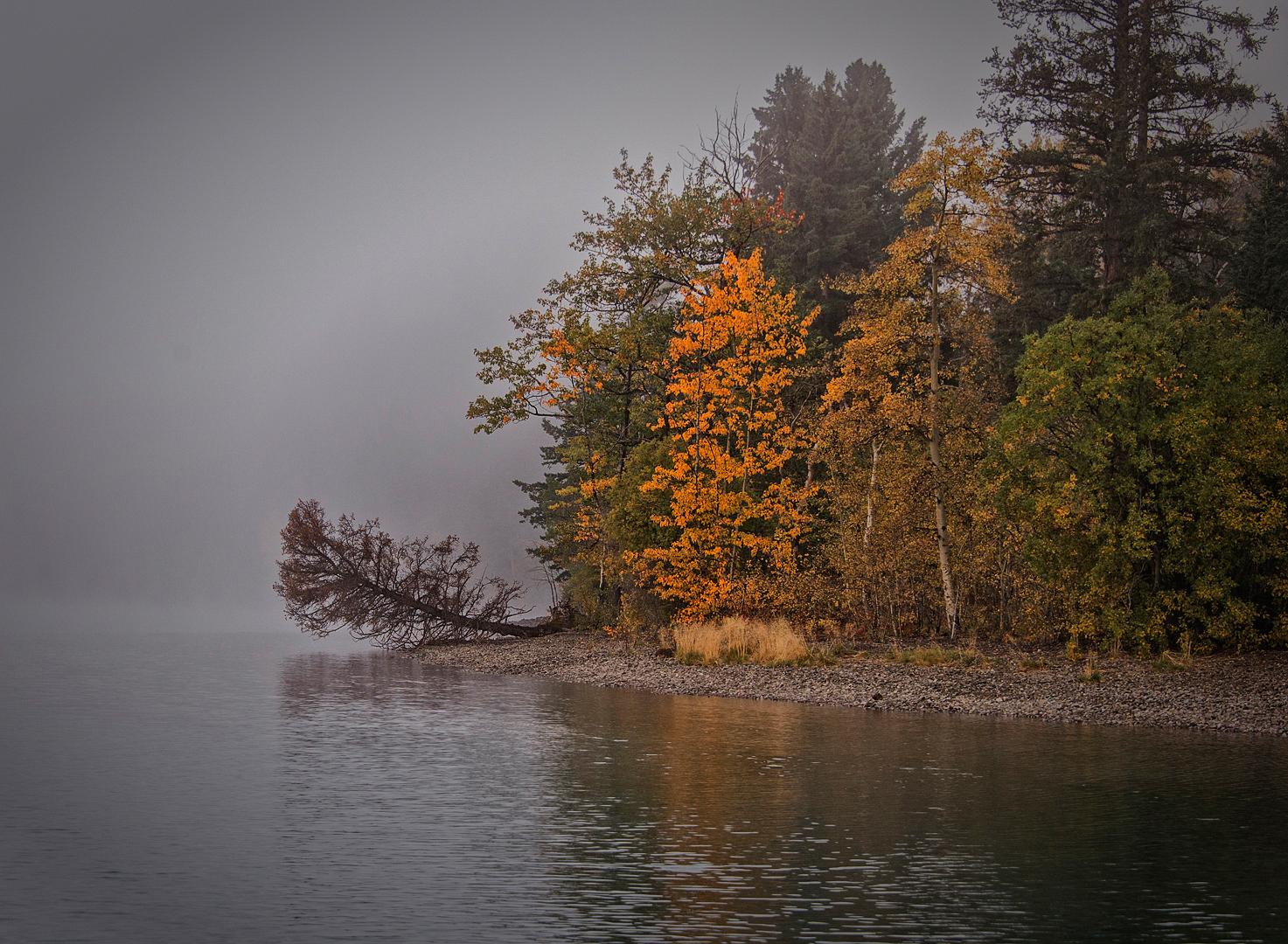 Chilko River 3