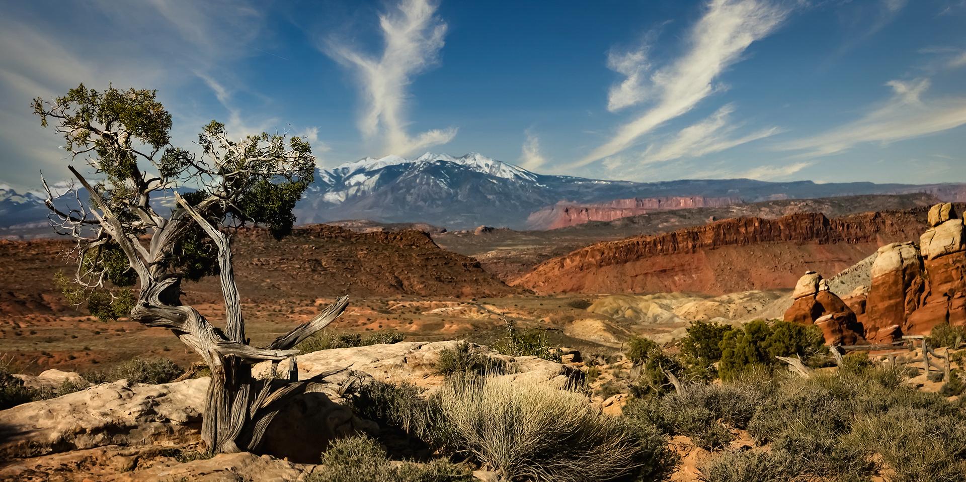Southern Utah Vista