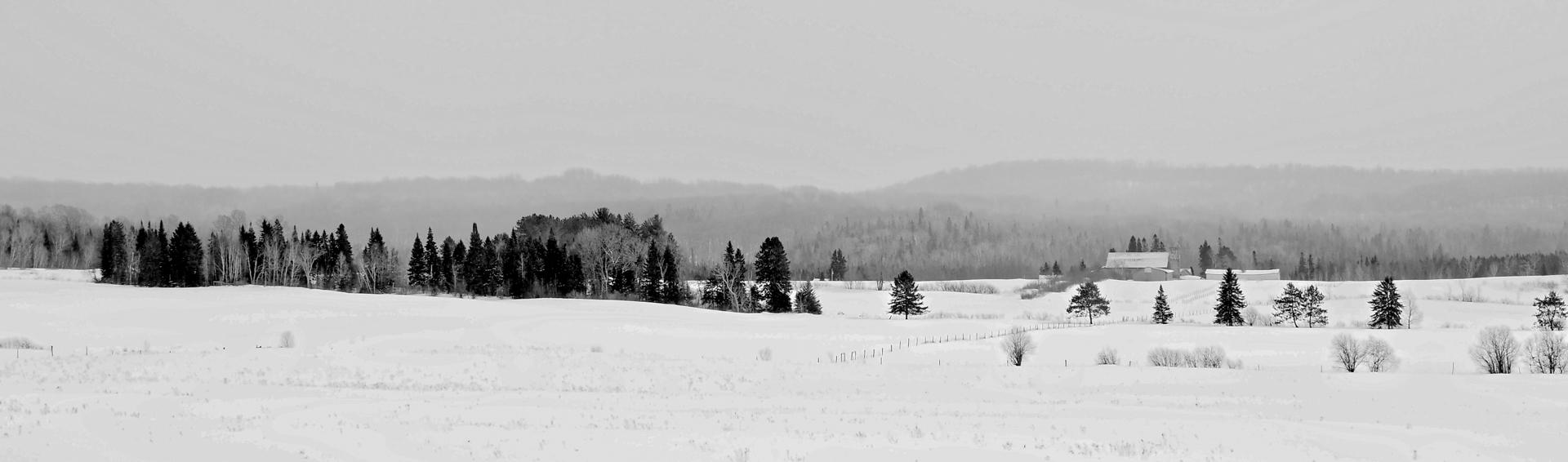 Northern Winterscape