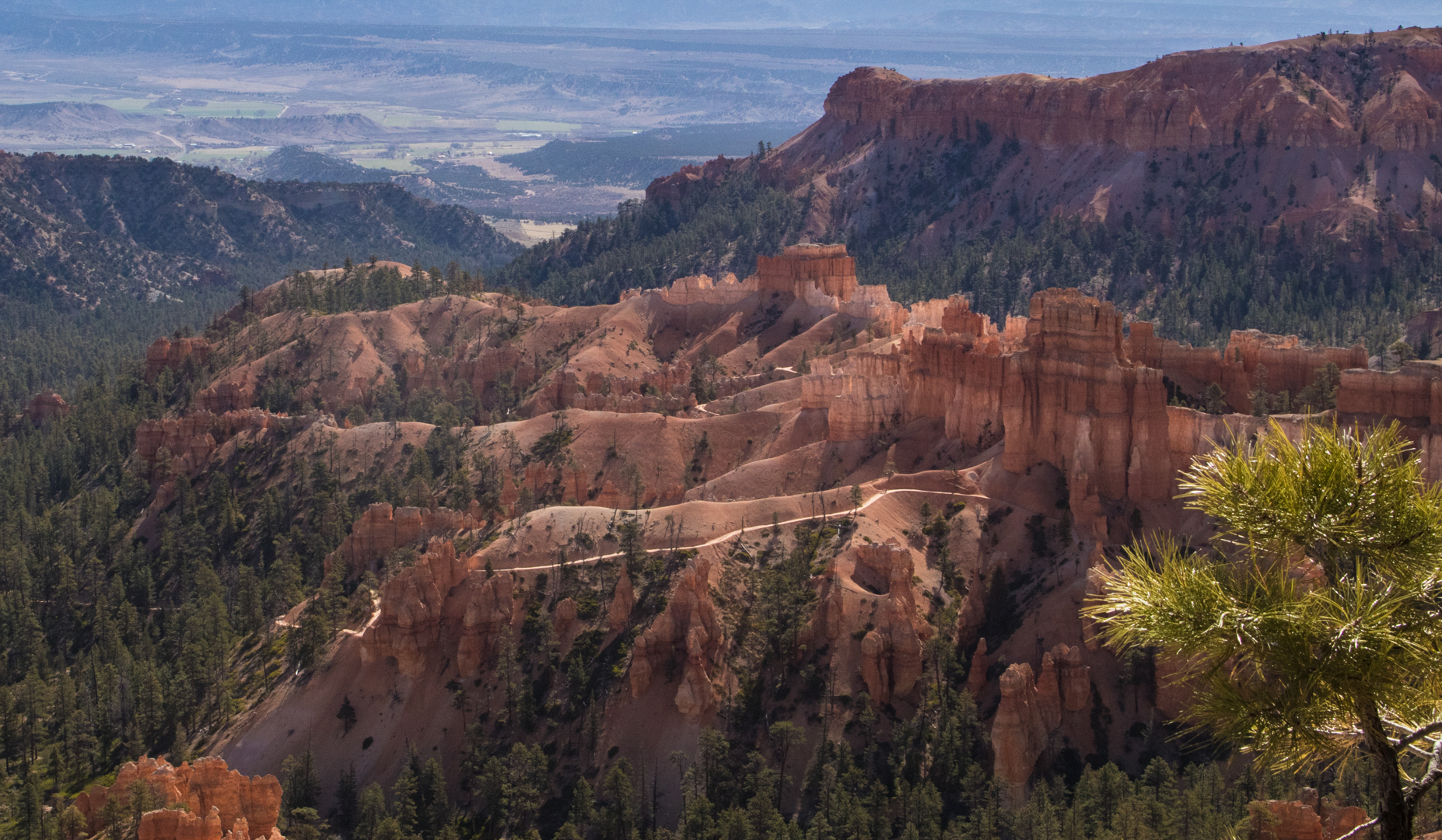Bryce Lookout