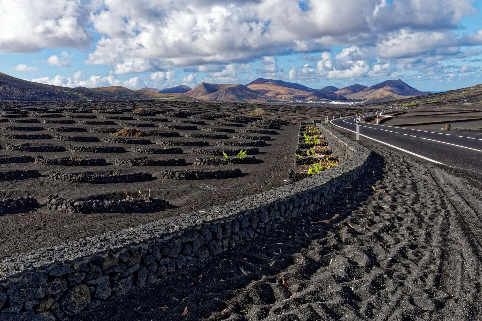 Volcanic Vineyards of Lanzarote