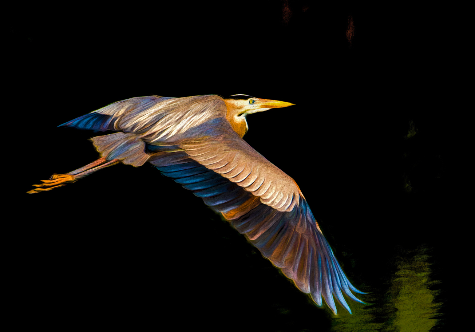 Heron night flight