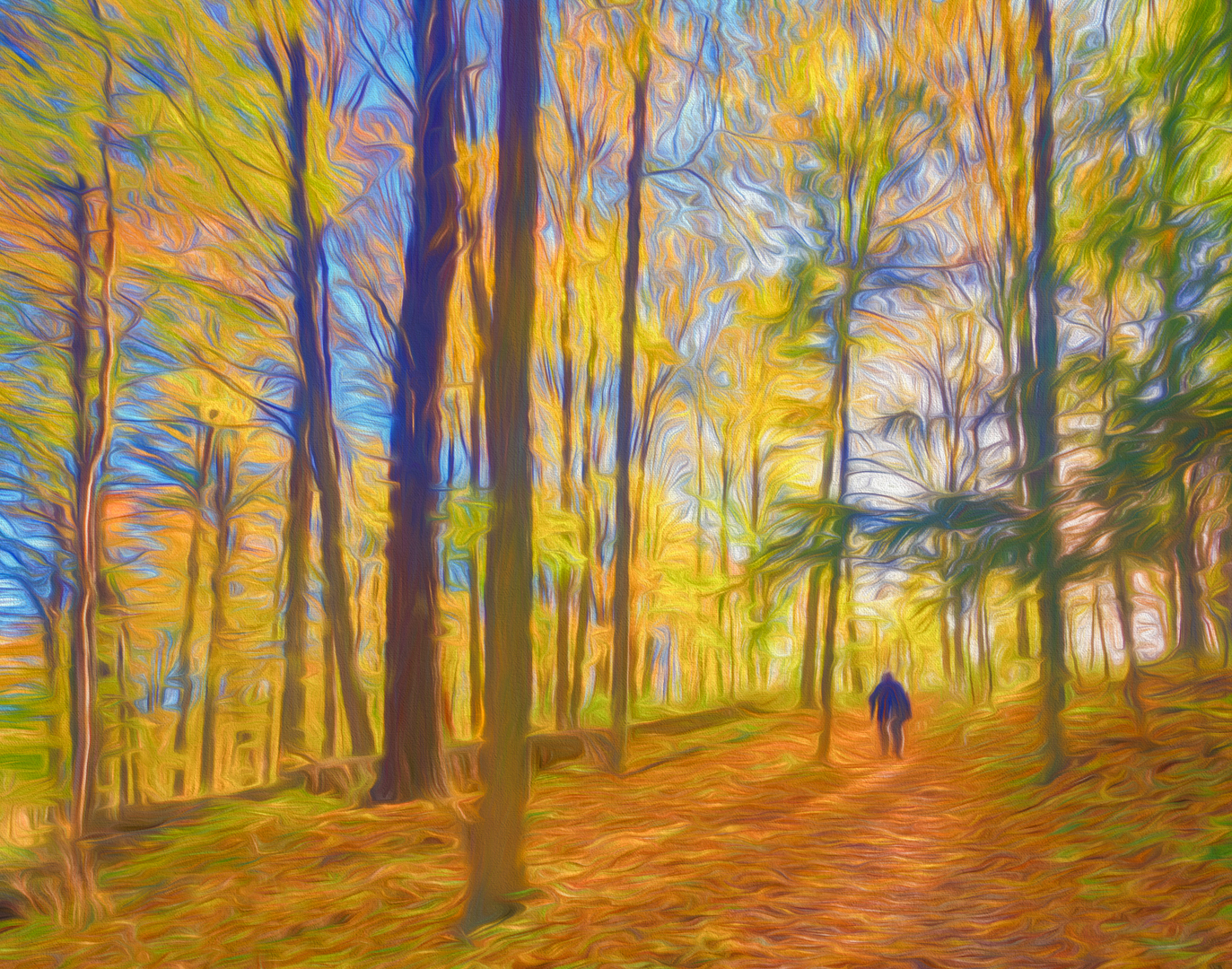 Hiker In Enchanted Forest