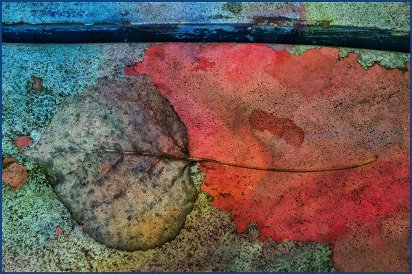 Auto Yard Impressionism