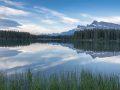 Alberta Reflected