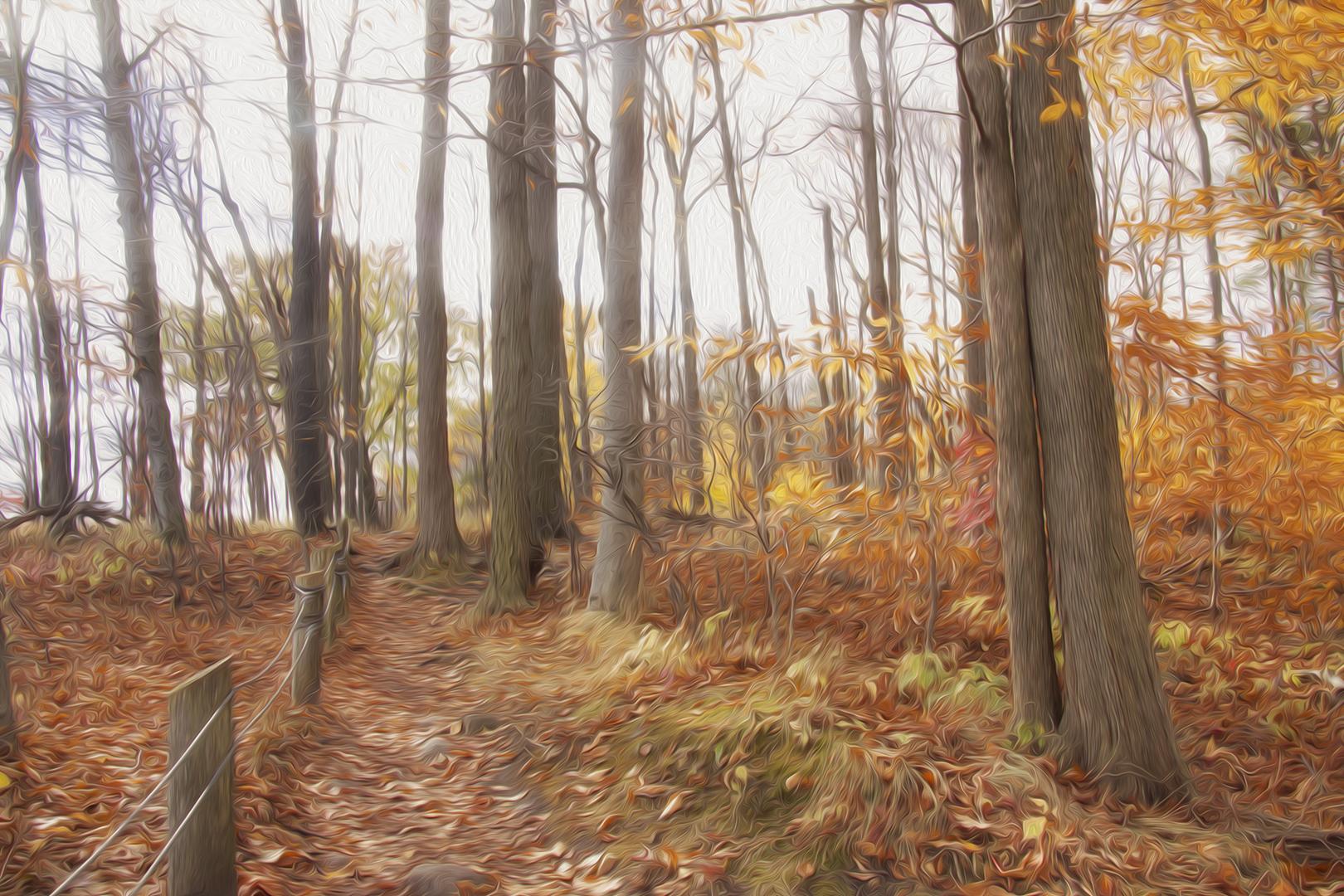 Peaceful Fall Day