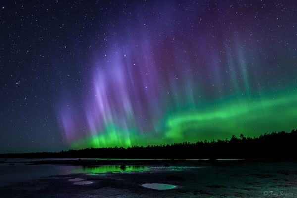 Northern Lights over Singing Sands