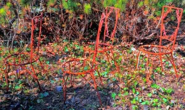 Rust on the island
